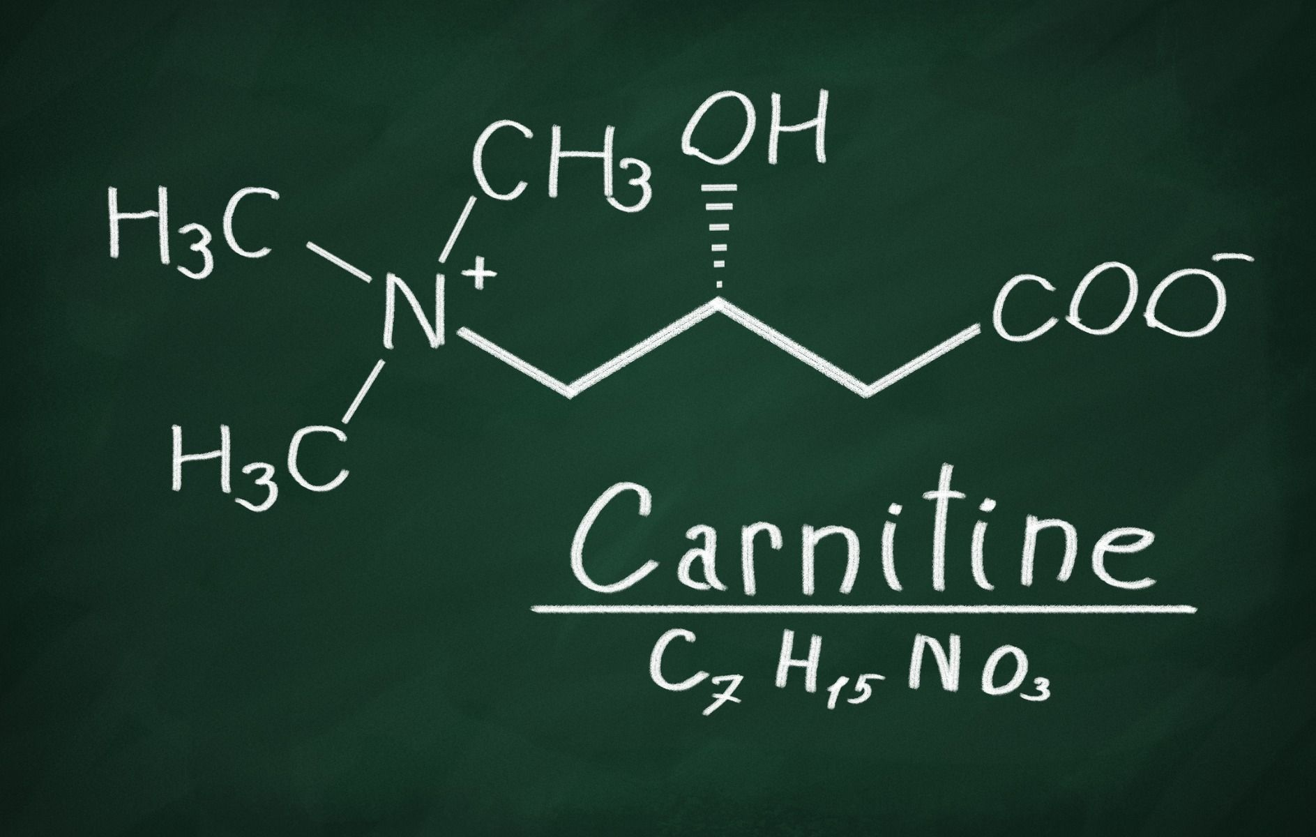 L-Carnitin-Supplementation